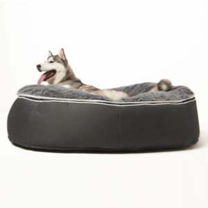 Extra large pet bed with husky