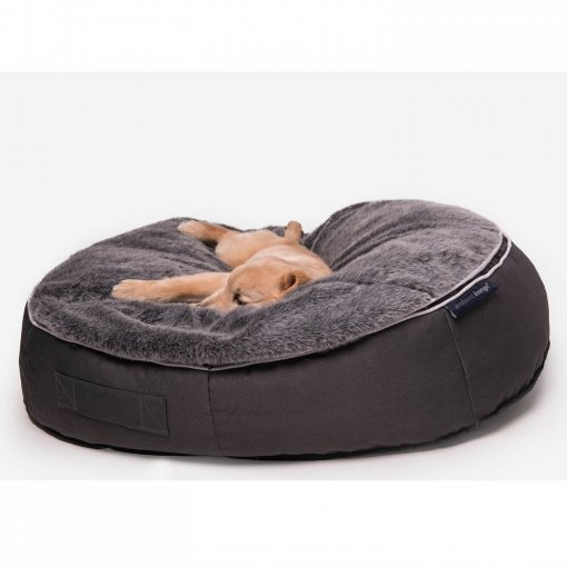 Small medium pet bed with dog