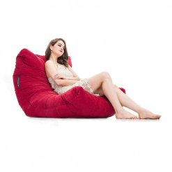 wildberry deluxe acoustic bean bag with model
