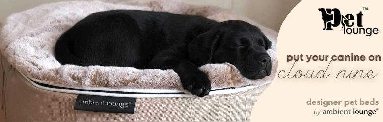 luxury designer pet bed ambient lounge